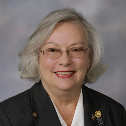 District 6860 Governor Sue's Blog